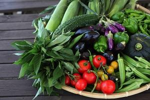 JCD愛彩畑2 vegetables.jpg